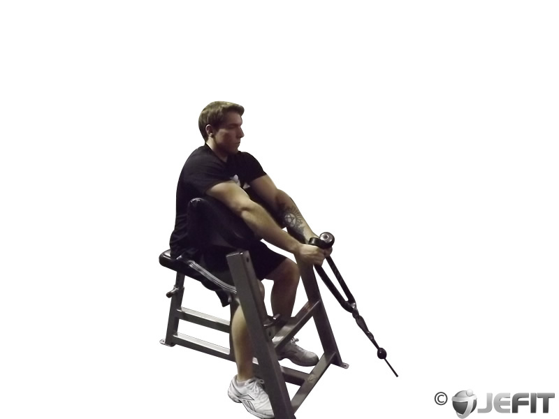 Cable Rope Hammer Preacher Curl