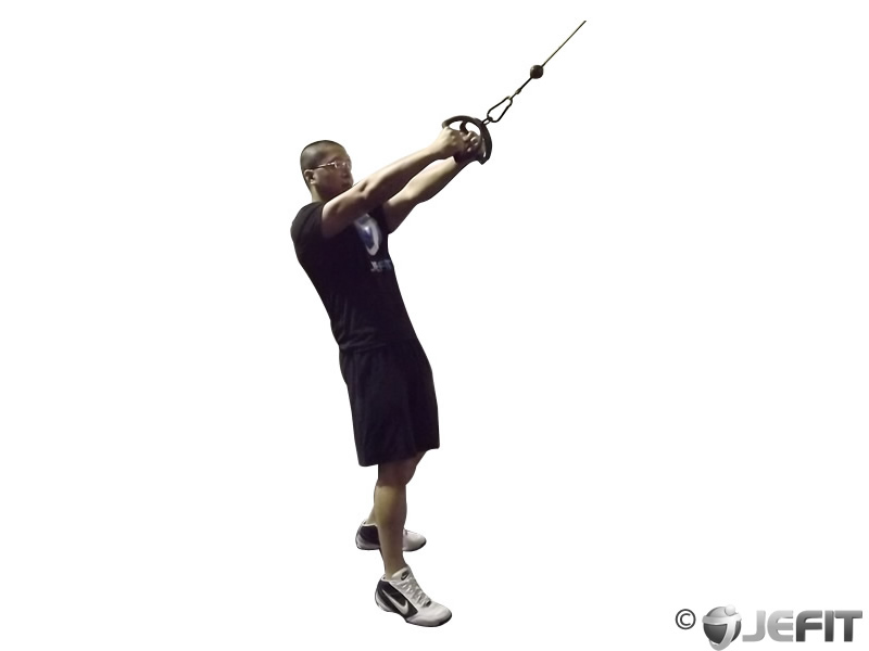 Cable V Bar Standing Row Exercise Database Jefit