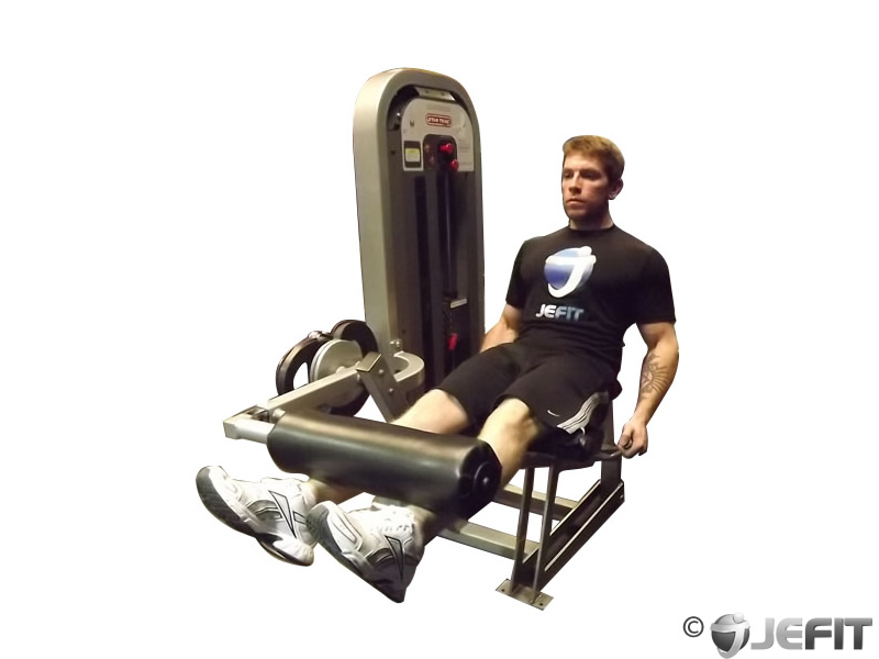 Leg Extensions Exercise Database Jefit Best Android
