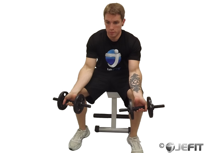 Dumbbell Seated Palms Up Wrist Curl