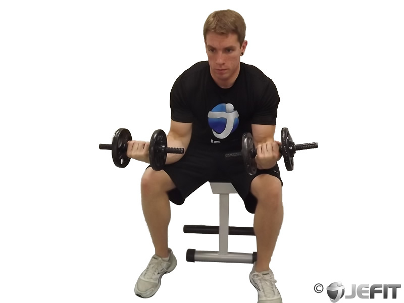 Dumbbell Seated Palms Up Wrist Curl Exercise Database