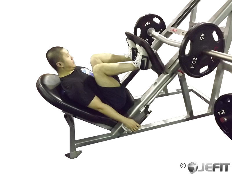 Leg Press Exercise Database Jefit Best Android And