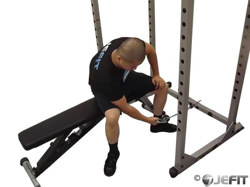 Cable Seated One Arm Concentration Curl