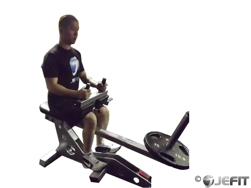 seated calf raise - exercise database