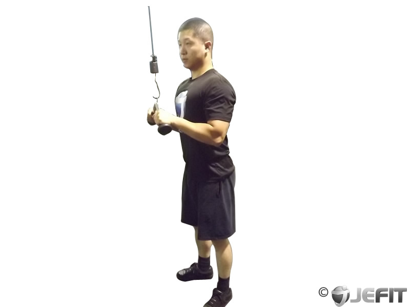 triceps pushdown v bar exercise database jefit best android