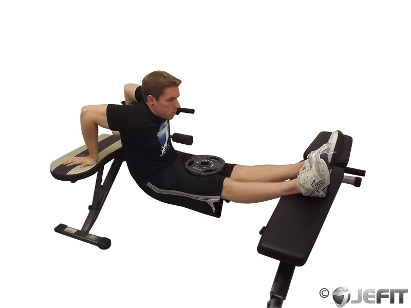 Awe Inspiring Weighted Bench Dip Exercise Database Jefit Best Pdpeps Interior Chair Design Pdpepsorg
