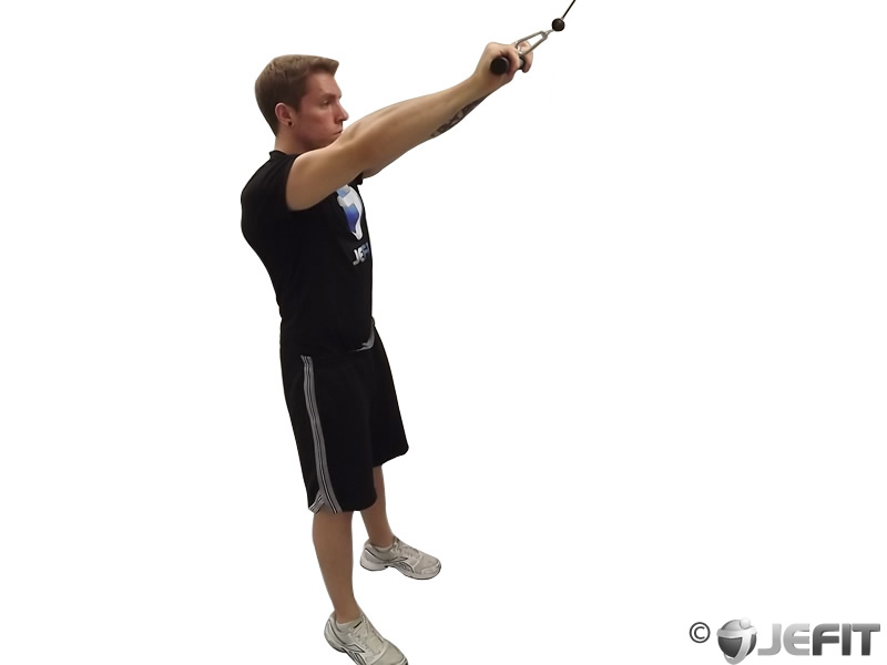 Cable Straight Arm Push Down