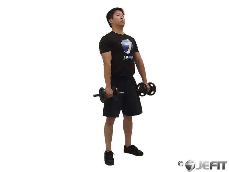 Dumbbell Deadlift