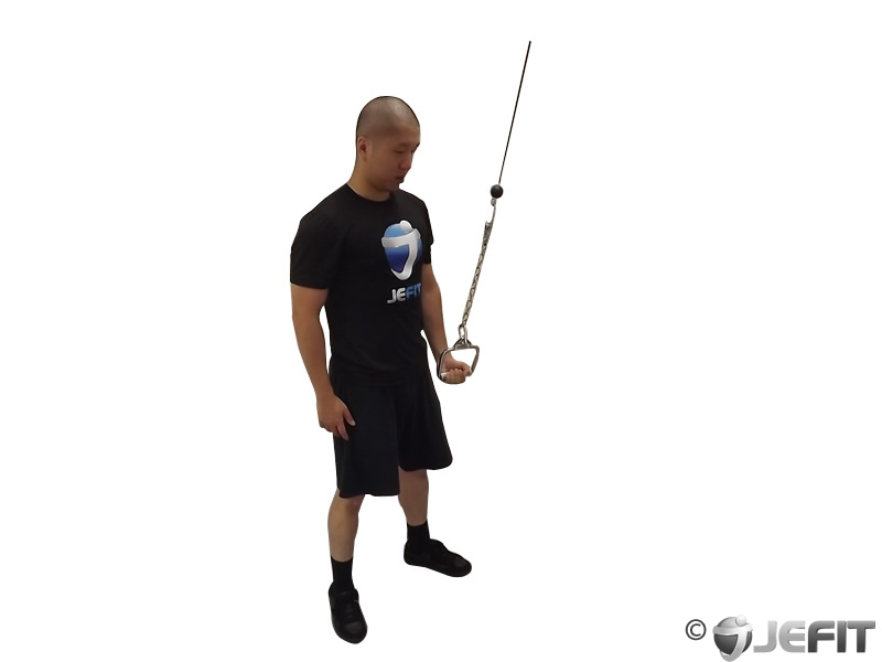 Cable Extension Exercise : Cable one arm tricep extension exercise database jefit