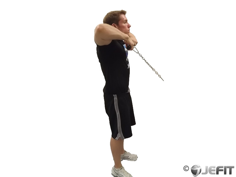 Cable Up Right Row Exercise Database Jefit Best
