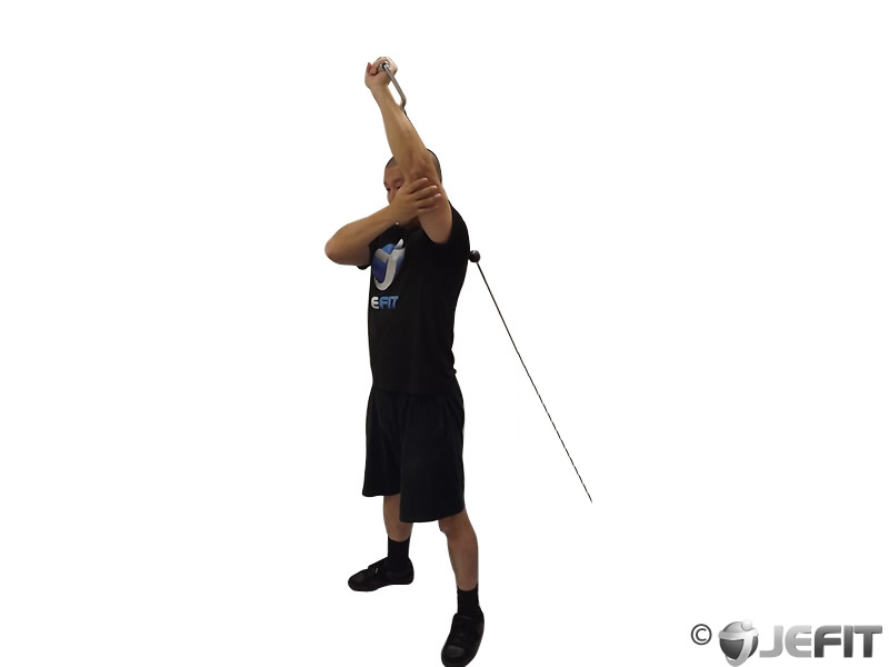 Cable Standing One Arm Low Pulley Triceps Extension