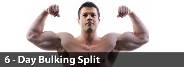 6 Day Bulking Split